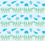 Sea Shell Collection Pattern Stock Images