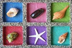 Sea Shell composition Stock Photo