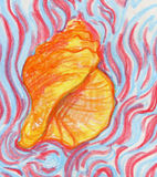 Sea shell crayon sketch. Hand drawn colored pencil sketch of a sea shell on wavy background Royalty Free Stock Image