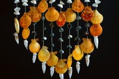 Sea shell decor Royalty Free Stock Photography
