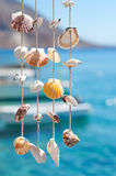 Sea shell decoration. With the sea in the background Stock Images