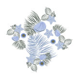 Sea shell Elements Composition. Flat seashell  illustration. Royalty Free Stock Photography