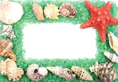 Sea shell frame Royalty Free Stock Image