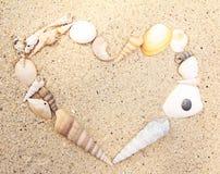 Sea Shell heart shape Stock Photo