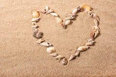 Sea shell heart shape royalty free stock photo