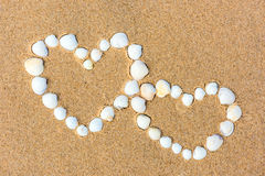 Sea shell hearts on the sand beach Stock Image