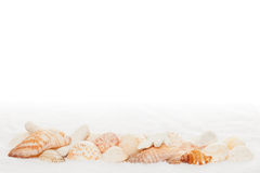 Sea Shell Horizontal Border on White Towel. Texture Background with Copy Space royalty free stock image