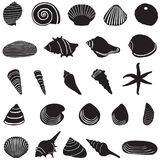 Sea shell icons set. Royalty Free Stock Images
