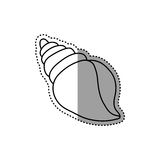Sea shell isolated. Icon  illustration graphic design Royalty Free Stock Photography