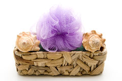 Sea shell with massage sponge Royalty Free Stock Photography
