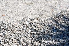 Sea shell mound background Stock Photography