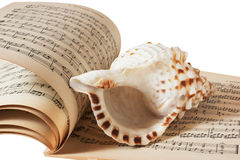 Sea shell and music book Royalty Free Stock Images