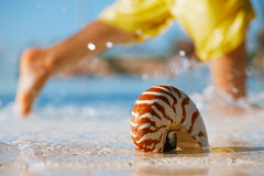 Sea shell nautilus on swimming pool edge and kid running backgro Royalty Free Stock Photography