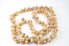 Sea Shell Necklace on white background Royalty Free Stock Images
