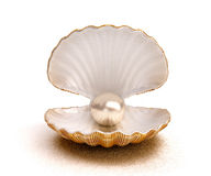 Sea shell with pearl Stock Photos