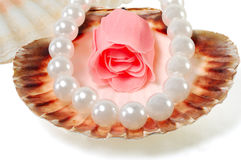 Sea shell with pearls and a rose Stock Photography
