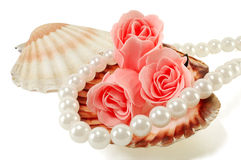 Sea shell with pearls and a rose. On a white background Stock Image
