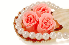 Sea shell with pearls and a rose. On a white background Stock Photo