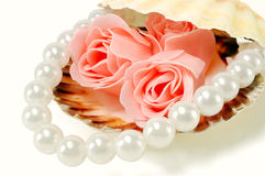 Sea shell with pearls and a rose. On a white background Stock Images