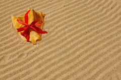 Sea Shell with red ribbon and gold sand Stock Image