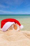 Sea shell in Red Santa's hat at the beach Stock Photography
