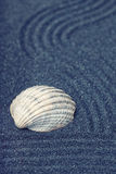 The sea shell in a relaxing zen garden with black sand Royalty Free Stock Photo