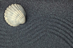 Sea shell in a relaxing zen garden with black  sand Royalty Free Stock Photo