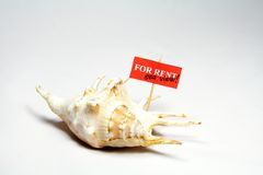 Sea shell rent. Sea shell for rent with sea view sign Royalty Free Stock Image