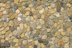 Free Sea Shell Rocks Royalty Free Stock Photos - 4317558