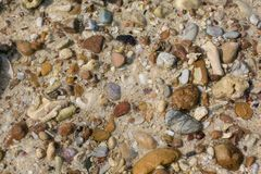 Sea shell and stone pieces texture. Sea sand texture made of shell and stone pieces Stock Image