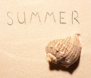 Sea shell and summer lettering drawn on beach sand. Sea shell and summer lettering drawn on sand. Summer beach background. View from above royalty free stock photo