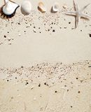 Sea shells. An ideal copy space for summer concept Royalty Free Stock Images