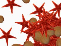 Sea shells. Wallpaper, background -diagonal sea shells Stock Photo