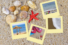 Sea shells. In the sand with some great pictures Royalty Free Stock Image