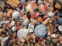 Sea Shells. Original watercolor illustration of sea shells. Detailed illustration ideal as a background image Stock Photo