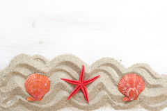 Sea shells ans starfish  - Tropical travel Stock Photography