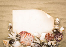 Sea shells on beach sand with old paper. Royalty Free Stock Photo