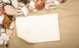 Sea shells on beach sand with old paper. Royalty Free Stock Photos