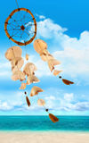 Sea Shells Blowing In The Wind Royalty Free Stock Images
