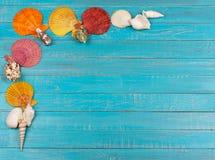 Sea Shells On Blue Wooden Background. Sea Shells Over Blue Wooden Background Stock Photos