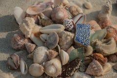 Sea shells and sea glass heaped on a sandy beach Stock Photos