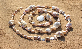 Sea shells building a spiral on the sand. At the beach: sea shells building a spiral on the sand Stock Photography