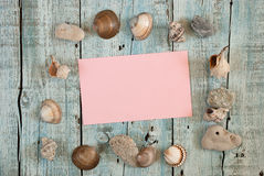 Sea shells and card Royalty Free Stock Photos