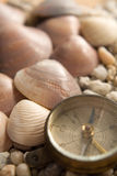 Sea Shells, compass and the stones closeup Royalty Free Stock Photos