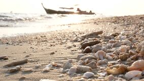 Ocean water waves moving through sea shells and coral fragments heap on golden beach morning sunlight with silhouette fishing boat. Blurred background stock footage