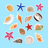 Sea shells cute stickers Royalty Free Stock Photos