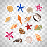 Sea shells cute stickers Stock Photo