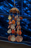 Sea shells decorations stock photos