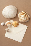 Sea shells and envelope. Sea shells and air mail envelope on brown fabric background Stock Image