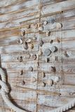 Sea shells in a fishnet,on wooden board, summer vacation background royalty free stock photo